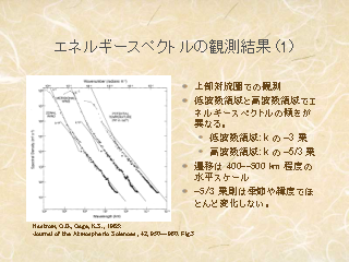 成層回転乱流の数値計算と大気スペクトル:門前編」